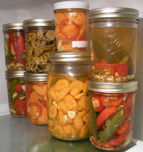 hot spice carrots ice box pickles
