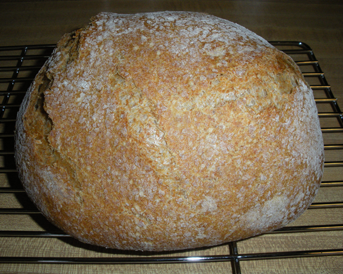 Loaf made with 50% Red Fife wheat flour and 50% white wheat flour